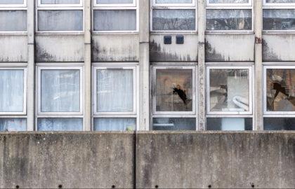 windows in block of flats